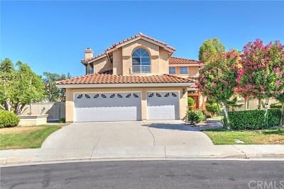 Temecula Single Family Home For Sale: 32217 Corte Tomatlan