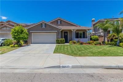 Lake Elsinore Single Family Home For Sale: 32625 San Nicholas