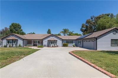 Temecula Single Family Home For Sale: 31508 Avenida Del Reposo
