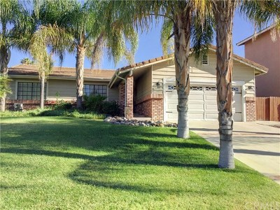 Canyon Lake Single Family Home For Sale: 22666 Castle Crag Drive
