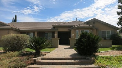 Riverside Single Family Home For Sale: 18640 Glass Mountain Drive