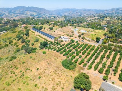 Fallbrook Residential Lots & Land For Sale: 803 Quail Hill Road