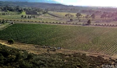 Temecula Residential Lots & Land For Sale: Pauba Road