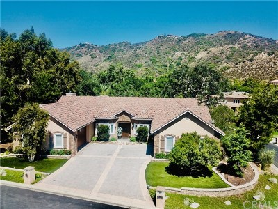 Murrieta Single Family Home For Sale: 38439 Quail Ridge Drive