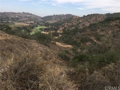 Temecula Residential Lots & Land For Sale: 3 La Cruz