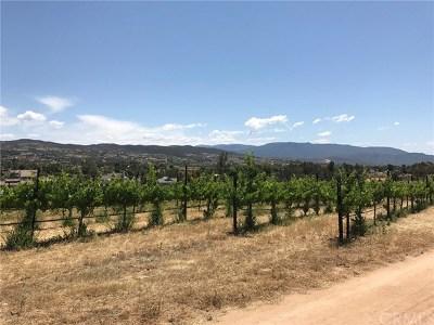 Temecula Residential Lots & Land For Sale: 54 Bella Vista Road