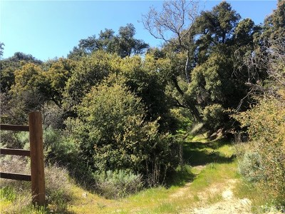 Murrieta Residential Lots & Land For Sale: Paseo Chaparro