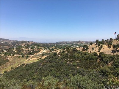 Murrieta Residential Lots & Land For Sale: Vista Del Bosque