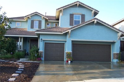 Murrieta Single Family Home For Sale: 41877 Dahlias Way