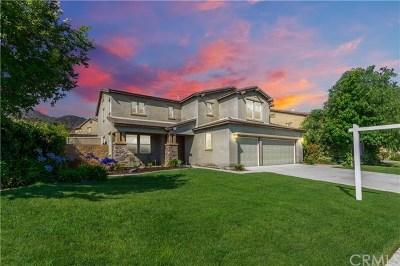Wildomar Single Family Home For Sale: 21499 Terrazzo Lane