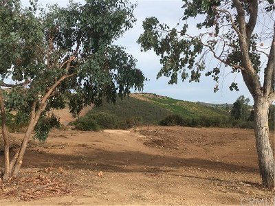 Murrieta Residential Lots & Land For Sale: Calle Bandido