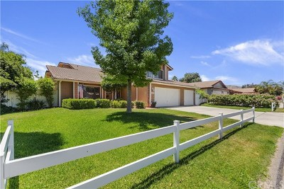 Lake Elsinore Single Family Home For Sale: 15025 Zieglinde Drive