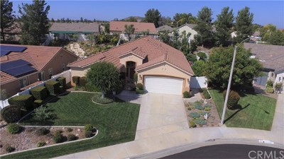 Murrieta Single Family Home For Sale: 30288 Callaway Circle