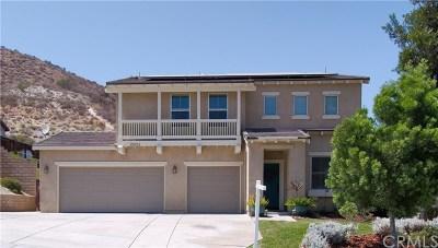 Lake Elsinore Single Family Home For Sale: 29241 Sandpiper Drive