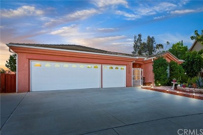 Murrieta Single Family Home For Sale: 38389 Birch Hill Court