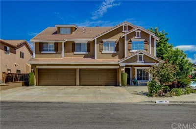 Murrieta Single Family Home For Sale: 39877 Buxton Court