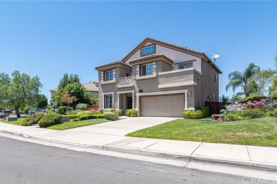 Temecula Single Family Home For Sale: 29448 Georgetown Lane