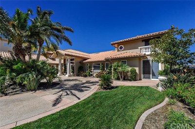 Murrieta Single Family Home For Sale: 37895 Sky High Drive
