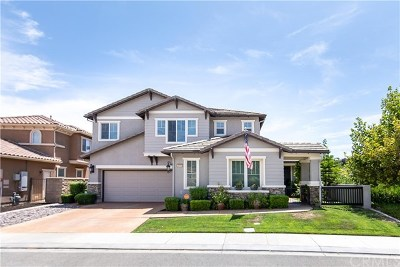Murrieta Single Family Home For Sale: 26990 Pumpkin Street