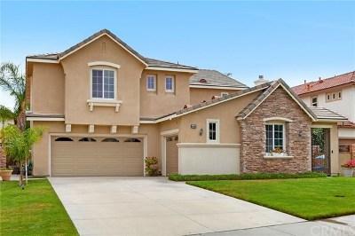 Temecula Single Family Home For Sale: 44006 Horizon View Street