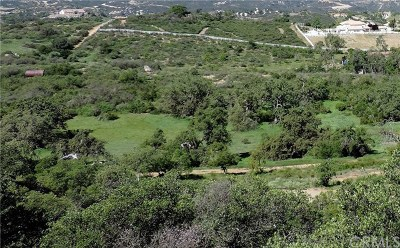 Murrieta Residential Lots & Land For Sale: Calle Compina Nuevo