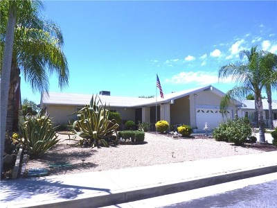 Sun City Single Family Home For Sale: 26161 Albany Drive
