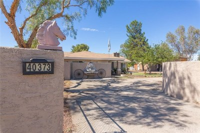 Hemet, San Jacinto Single Family Home For Sale: 40373 Stetson Avenue