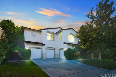 Murrieta Single Family Home For Sale: 42296 Wildwood Lane