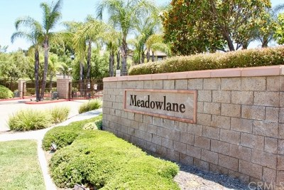 Canyon Lake, Lake Elsinore, Menifee, Murrieta, Temecula, Wildomar, Winchester Rental For Rent: 25178 Meadow Walk Street #2