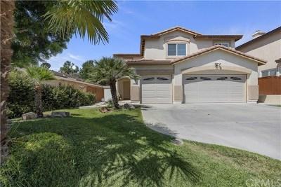 Temecula Single Family Home For Sale: 41463 Ashburn Road