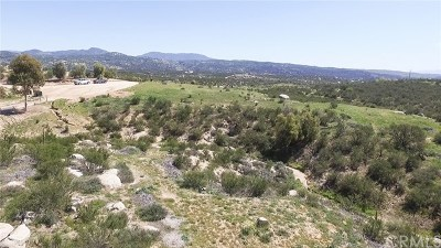 Hemet Residential Lots & Land For Sale: Silverwood
