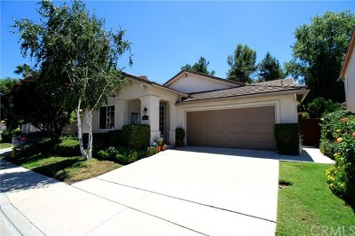 Temecula Single Family Home For Sale: 42078 Southern Hills Drive
