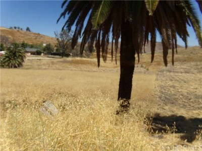Lake Elsinore Residential Lots & Land For Sale: Gunnerson Street