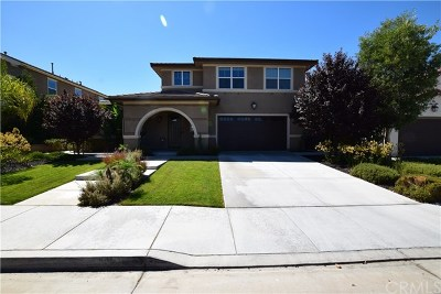 Menifee Single Family Home For Sale: 25317 Wild View Road
