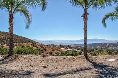 Murrieta Residential Lots & Land For Sale: 20150 Avenida De Arboles