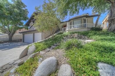 Canyon Lake Single Family Home For Sale: 21692 Appaloosa Court