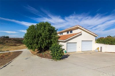 Temecula Single Family Home For Sale: 38660 De Portola Road