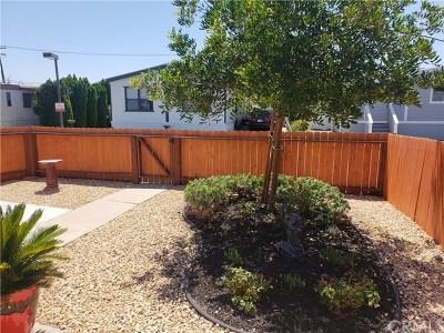 Canyon Lake, Lake Elsinore, Menifee, Murrieta, Temecula, Wildomar, Winchester Rental For Rent: 41900 Ivy Street #34