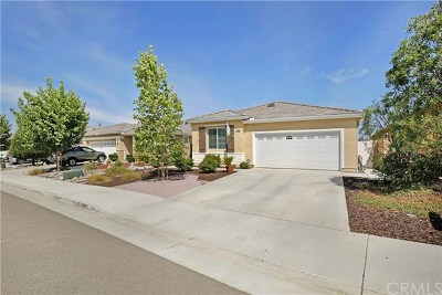 Menifee Single Family Home For Sale: 30306 Silicate Drive