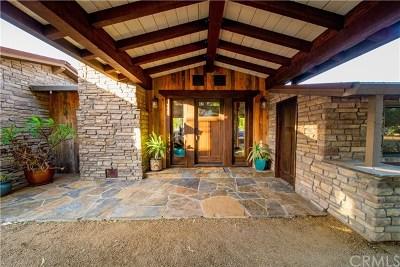 Murrieta Single Family Home For Sale: 42809 Guava Street