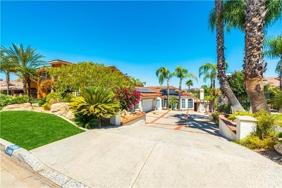 Canyon Lake Single Family Home For Sale: 23196 Gray Fox Drive