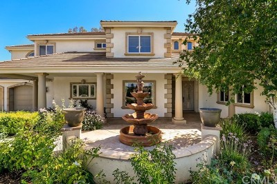 Murrieta, Temecula Single Family Home For Sale: 37616 Avenida La Cresta