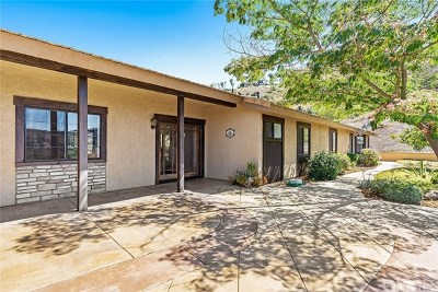 Temecula Single Family Home For Sale: 25751 El Chaval Place