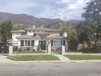 Rancho Cucamonga Single Family Home For Sale: 9992 Meadowood Drive