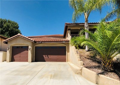 Canyon Lake Single Family Home For Sale: 30095 Point Marina Drive