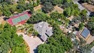 Murrieta, Temecula Single Family Home For Sale: 42400 Via Nortada