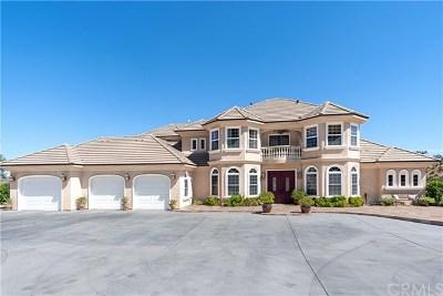 Murrieta CA Single Family Home For Sale: $1,029,000