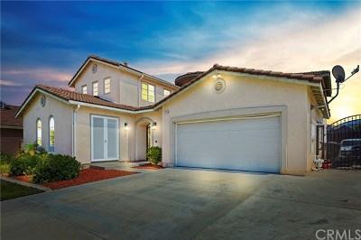 Winchester Single Family Home For Sale: 35354 Corte San Felipe