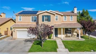 Winchester Single Family Home For Sale: 35090 Cedar Ridge Court