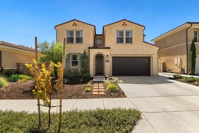 Murrieta Single Family Home For Sale: 30645 Arrow Leaf Lane